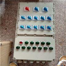 控制6路分电机设备防爆动力配电箱