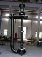 YWSP双吸式不锈钢液下泵