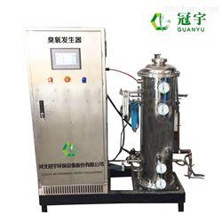 5公斤空气源臭氧发生器 *