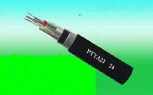 PTYV铁路传输电缆