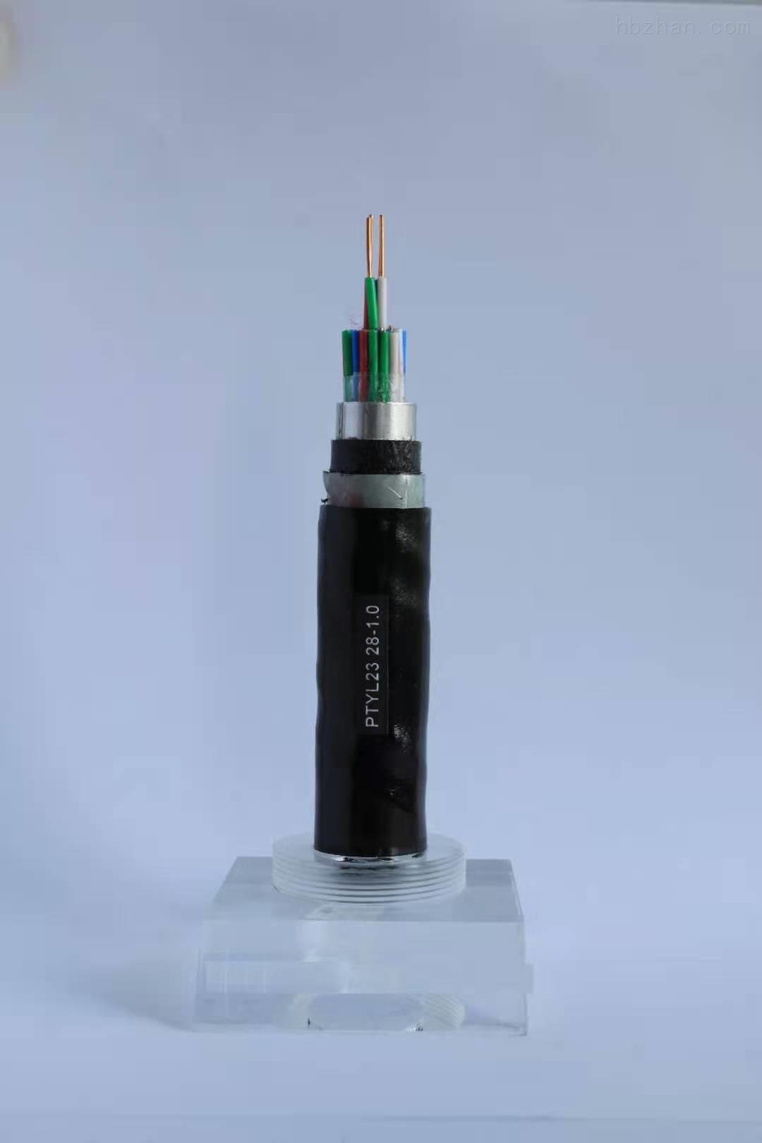 PTY23信号数字电缆