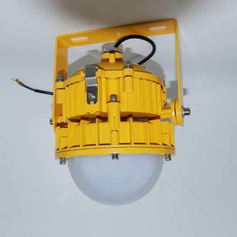 高效节能免维护30W50W防爆灯
