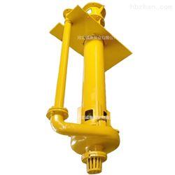 (SP)R65QV立式液下渣浆泵