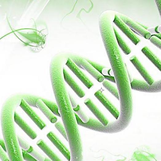 生物信息学分析实验检测