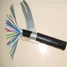 阻燃音频电缆ZR-HYAT、ZRHYA53型号