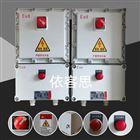 BXDM-6/K63 多回路防爆照明动力箱非标定制