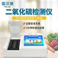 HED-R12食品二氧化硫测定仪