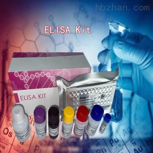 单核细胞趋化蛋白4ELIS检测试剂盒