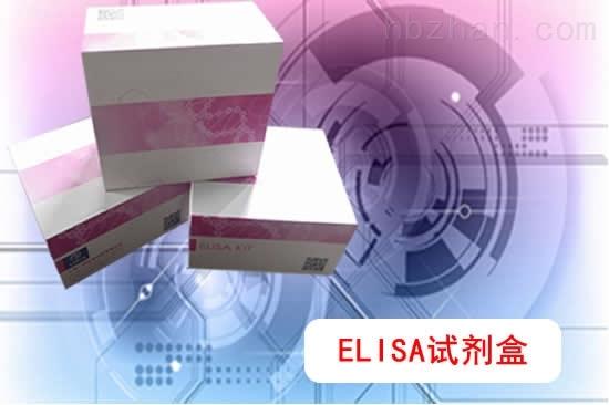 抗Ri抗体ELISA检测试剂盒