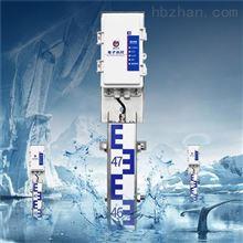 RS-DR-N01-1建大仁科电子水尺 城市防洪道路积水监测