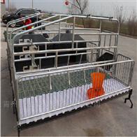 猪用产床单体双体养殖设备