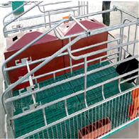 养猪设备母猪产床单体产床