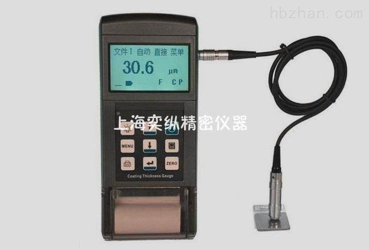 TT260漆膜测厚仪(带打印功能)