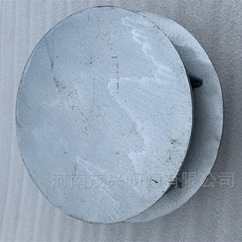 碳钢旋流防止器
