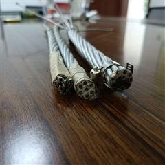 铝包钢绞线JLB20A-55生产厂家