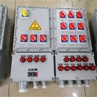 氯气房用防爆照明动力配电箱