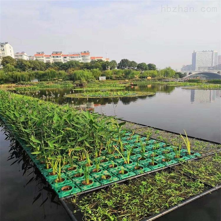 修复水体设备太阳能生态系统生态浮岛