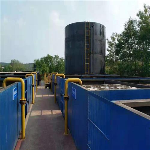 山东某公司300m³/d蔬菜加工废水治理项目