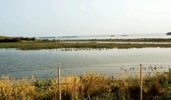 关于公开征求《黄河保护立法草案(征求意见稿)》意见的公告