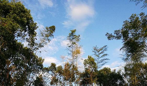 《四川省固体废物污染环境防治条例(修订草案)》征求意见的公告