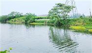 公开征求《江苏省山水林田湖草生态保护修复试点工程管理暂行办法》等三办法意见的公告