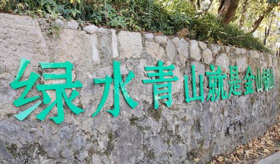 """""""绿水青山就是金山银山"""" 实践模式与典型案例(5)丨安徽省岳西县打好全域有机""""生态牌"""""""