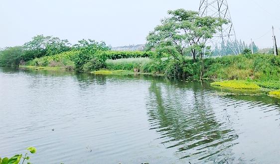 水利部:预计到2022年底全国将新增4000余家水利行业节水型单位