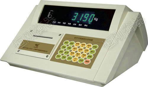 XK3190-DS3耀华仪表