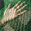 一次性防塵蓋土網具體分類